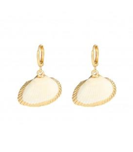 Mooie oorbellen gemaakt van echte zeeschelpen die versierd zijn met een goudkleurige verf